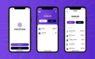 Announcing Proton Open SDK and Proton Lightweight Wallet